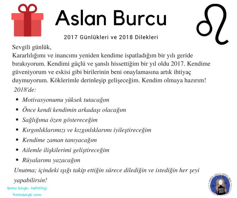 Koç Burçları 2016 Günlükleri ve 2017 Dilekleri (16)